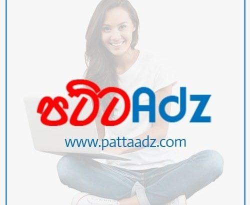 pattaadz