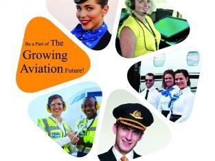 Aircraft maintenance technician Training Jobs