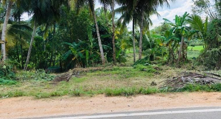 land sale in mawanalla