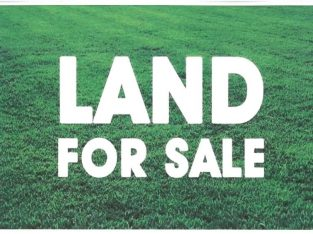 Land for sale in Mattegoda (17 p)