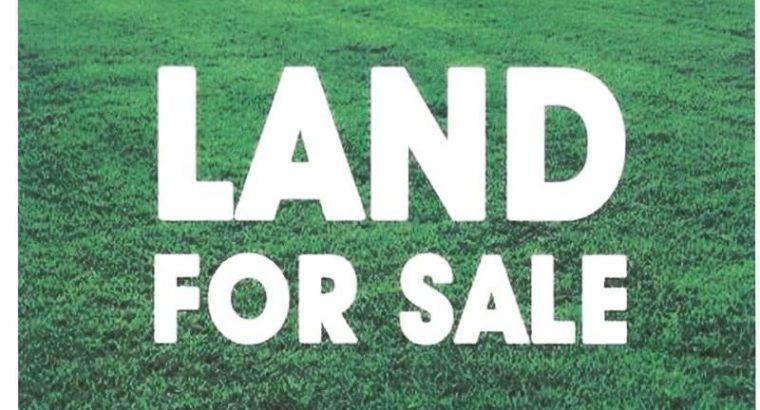 Land for sale in Mattegoda (17 p)
