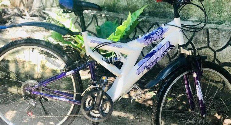 mountain bike,bike