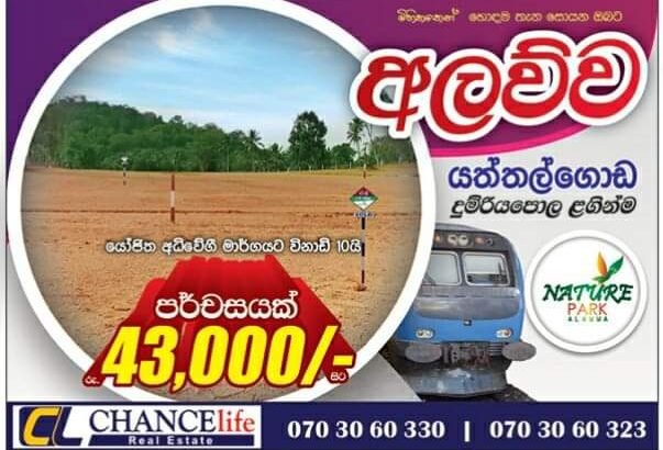 Land For Sale In alawwa