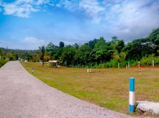 Valuable Land for sale in Homagama