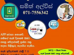 Econ Online Paper Class