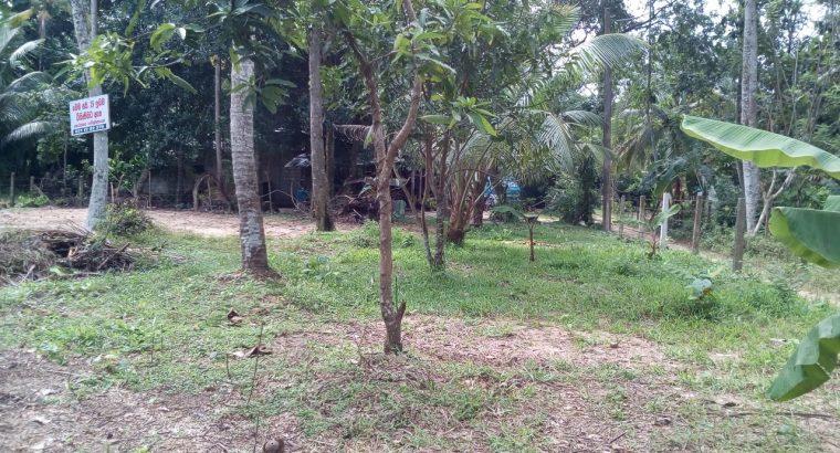 Land for sale in Minuwangoda