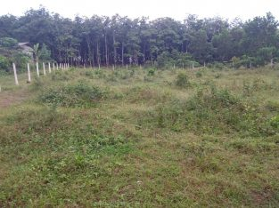 Land for Sale – Bandaragama