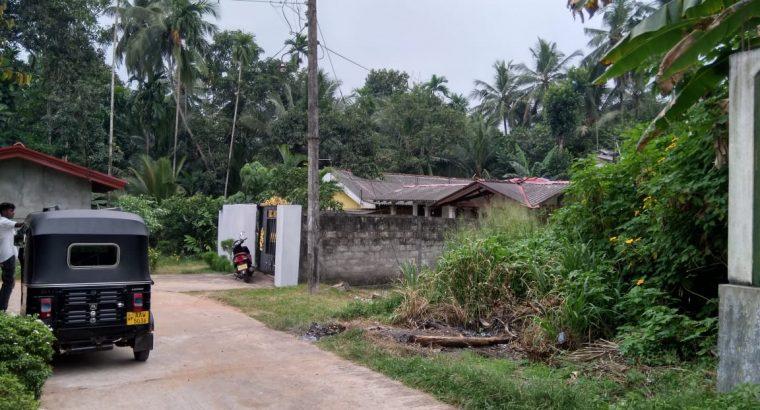 Bear Land for sale in Thihariya.