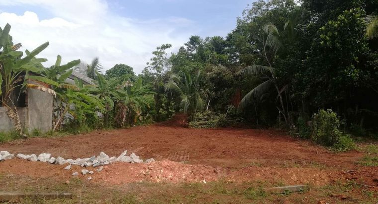 Land in Homagama Pitipana