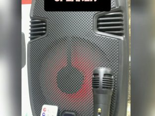 For Sale Karoke Speaker