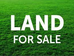 Valuable land for sale in Colombo city