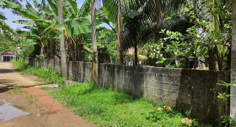 Property for Sale in Bandaragama Town – 46.64 P